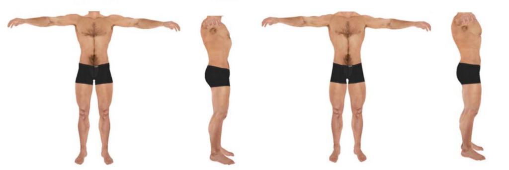 idea-bodies-
